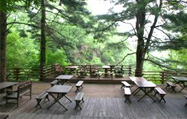장흥자생수목원 이미지3